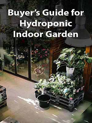 Buyer's Guide for Hydroponic Indoor Garden