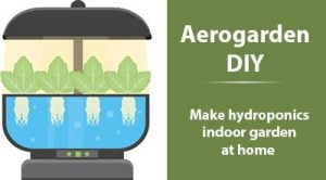 How to Make Hydroponics Indoor Garden at Home