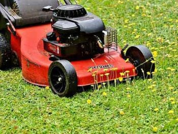 How to Use a Lawn Mower