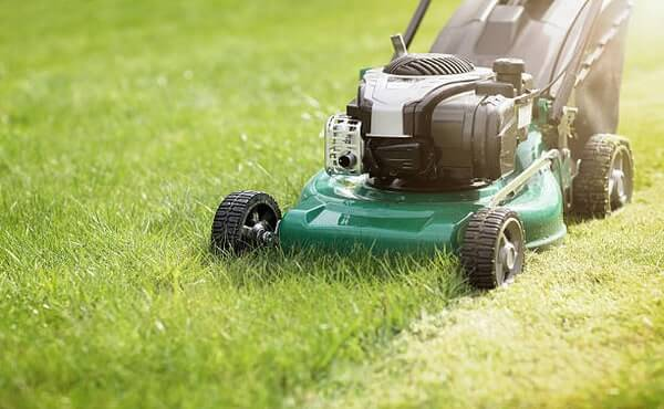 What To Do If Too Much Oil in Lawn Mower