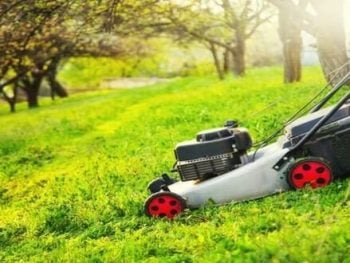 Best Self Propelled Lawn Mower For Hills