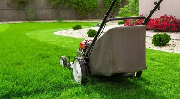 Best Lawn Mower for Townhouse