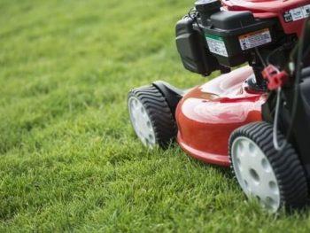Best lawn mower for women