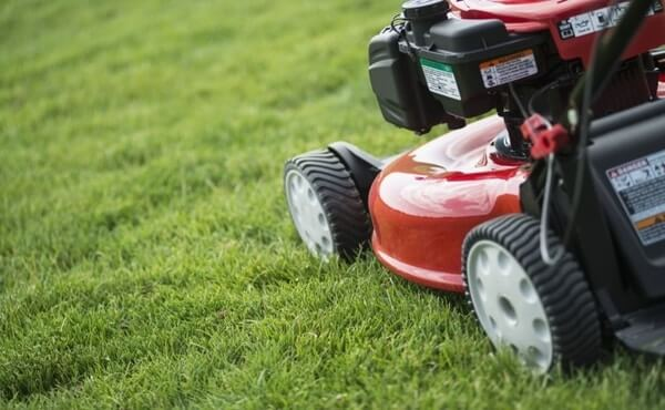 Best lawn mower for women