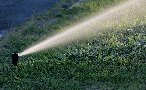 Lawn Irrigation System Cost